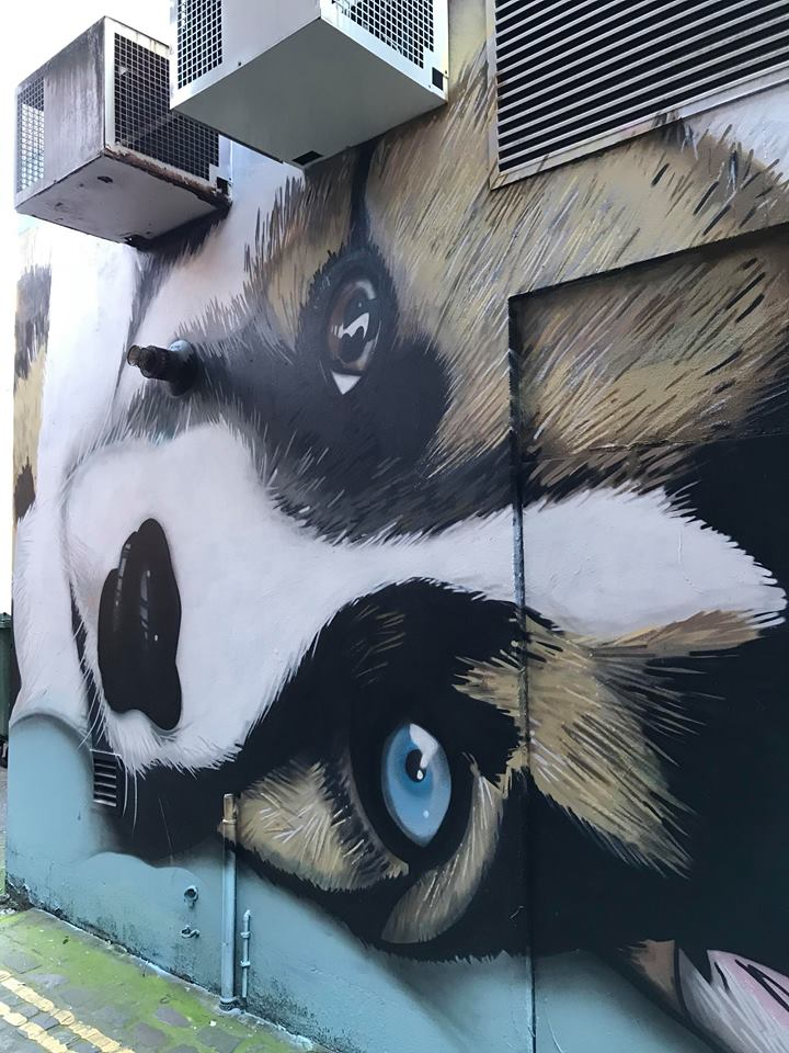 Belfast Street Art Walking Tour